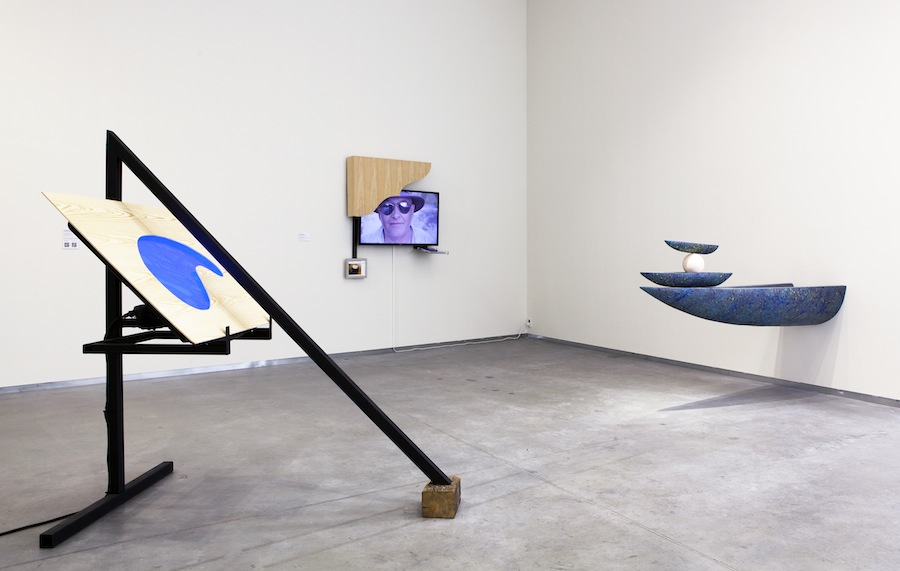 Camille Henrot: The Descendants of Pirogues / 2013